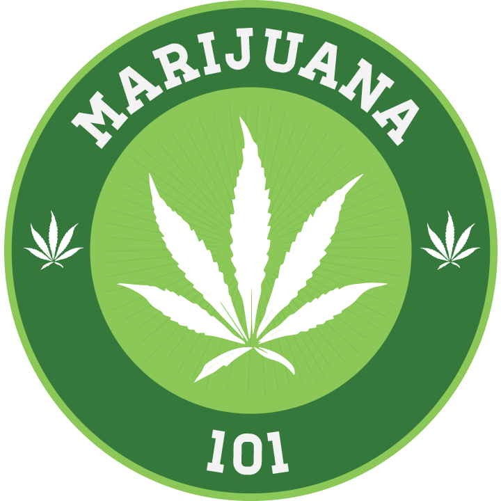 Thc University The Top Cannabis Training School